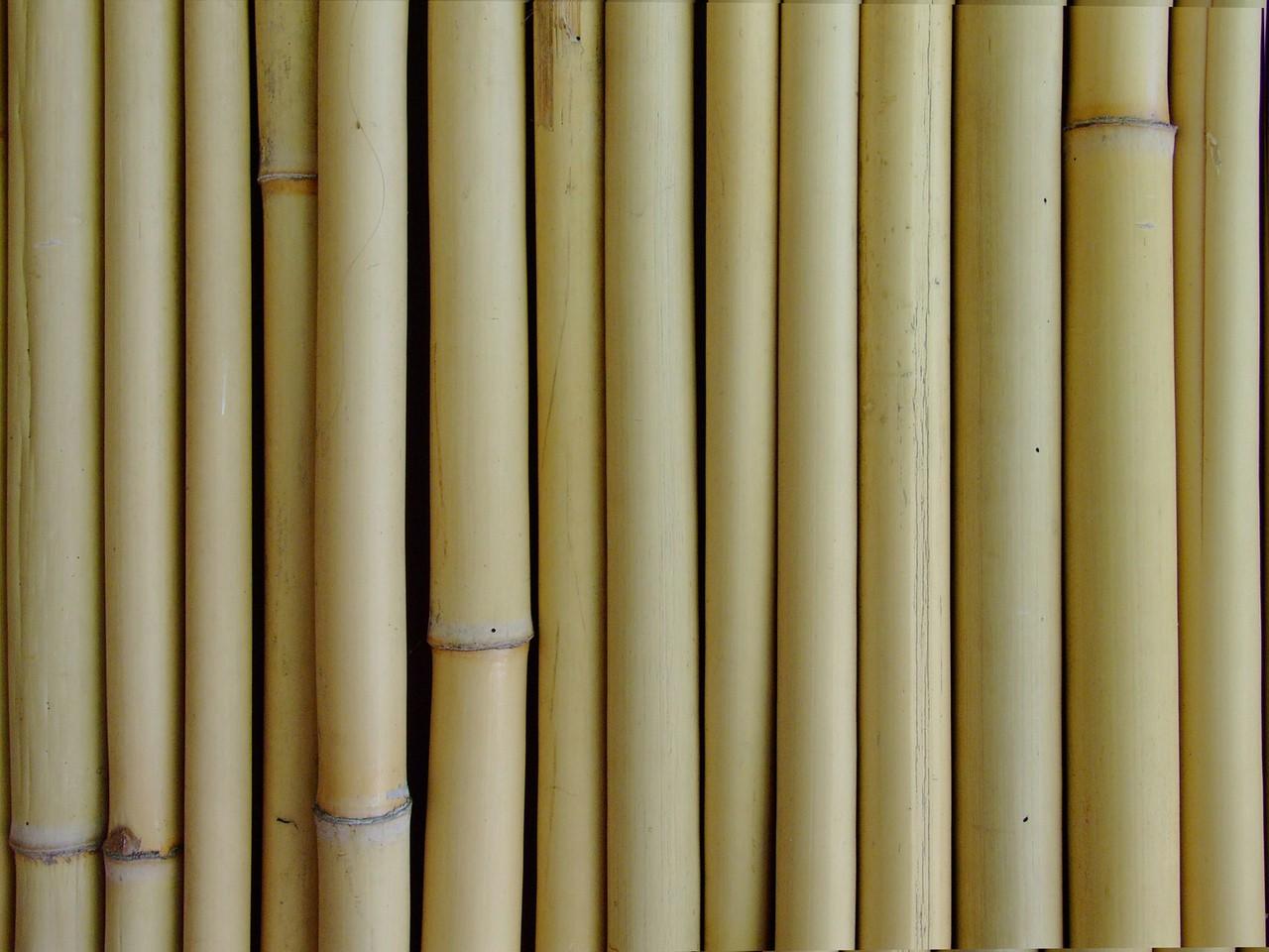 Relaksacyjny masaż bambusem – jak działa?
